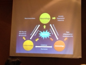 Amazing presentation by Dr. Stuller on the psycho-neuro-immunology triad. Facinating!